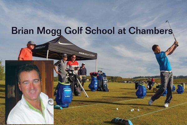 Mogg-School--Chambers-web